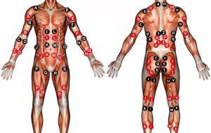 ems 2 electrode placement chart bodybuilding  Google