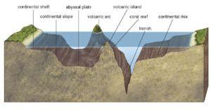 ocean floor map for kids | Ocean Floor Features Diagram