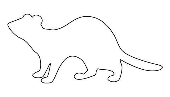 Ferret Pattern Use The Printable Outline For Crafts