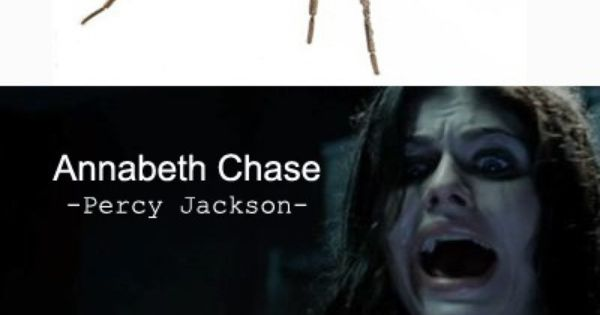 Percy Jackson Memes - Google Search