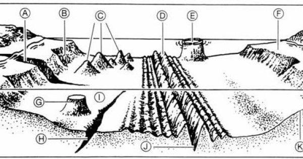 Ocean Floor Diagram Worksheet – Ocean Floor Diagram Worksheet