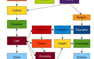 Diagram of Structural Functionalism This diagram exhibits