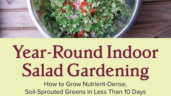 indoor gardening vegetables year round Year-Round Salad Gardening: How to Build an Indoor Garden