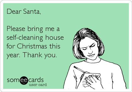 Dear Santa Please Bring Me A Self Cleaning House For