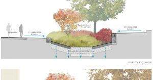 Bioswale Diagrams | Concept diagram