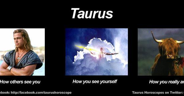 Funny Taurus Meme Zodiac Memes Pinterest Funny Lol