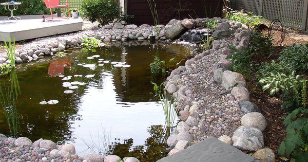 Backyard Duck Pond Bing Images Duck Ideas Pinterest