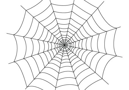 Spider Web You Will Find Down Bellow A Spider Web