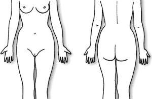 Body Diagram Form female    texts 5 body diagrams 5