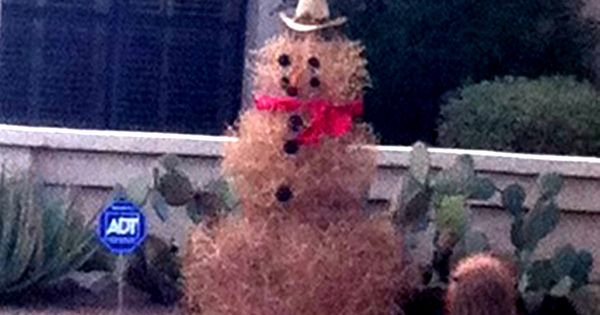 An Arizona Snowman No Mittens Required CHRISTMAS