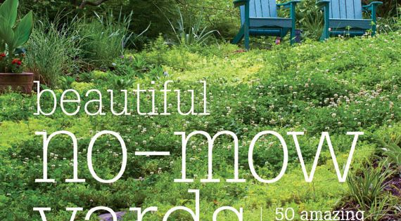 no mow yard ideas | Gardening at Repinned.net on No Mow Backyard Ideas id=27997