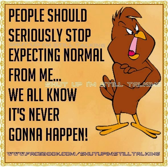 People Should Seriously Stop Expecting Normal from Me ...