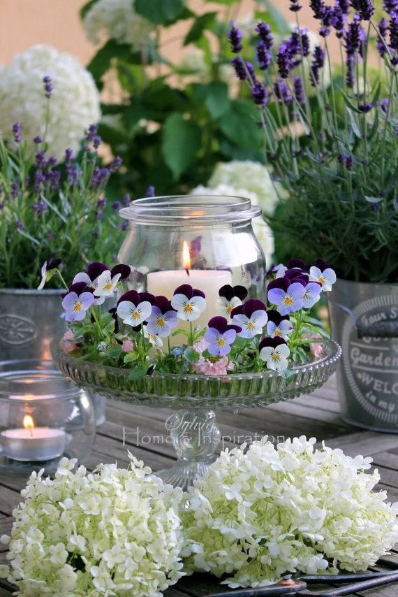 17 best images about mother s day table styling on on sweet dreams for your home plants decoration precautions and options id=92553
