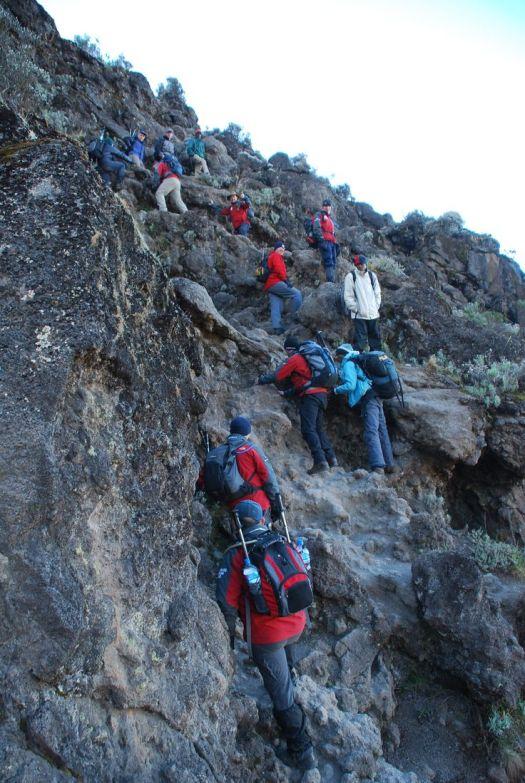Image result for kilimanjaro barranco wall