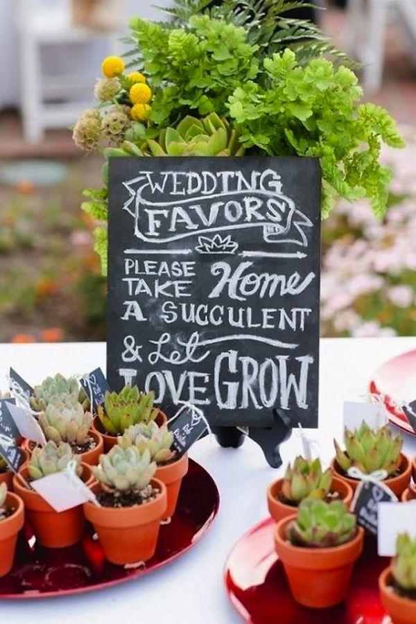Succulents make lovely wedd