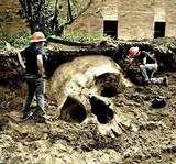25+ best ideas about Giant skeleton on Pinterest | Ice ...