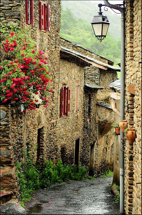 Medieval ~ Évol ~ France
