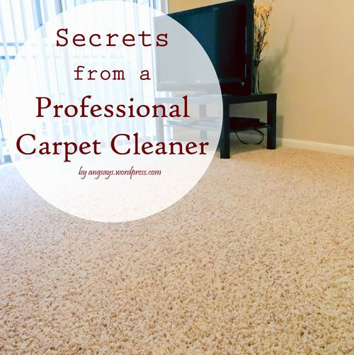 Professional Carpet Cleaning Tips…keep your carpets looking wonderful all year long!
