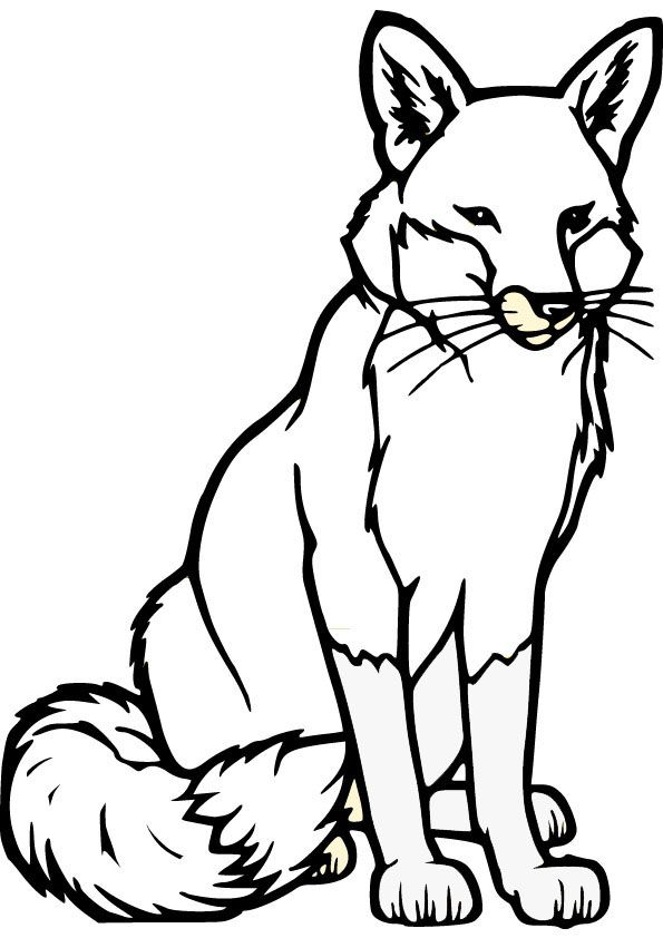 Fox Drawing Fox Coloring Pages Stuff For Work