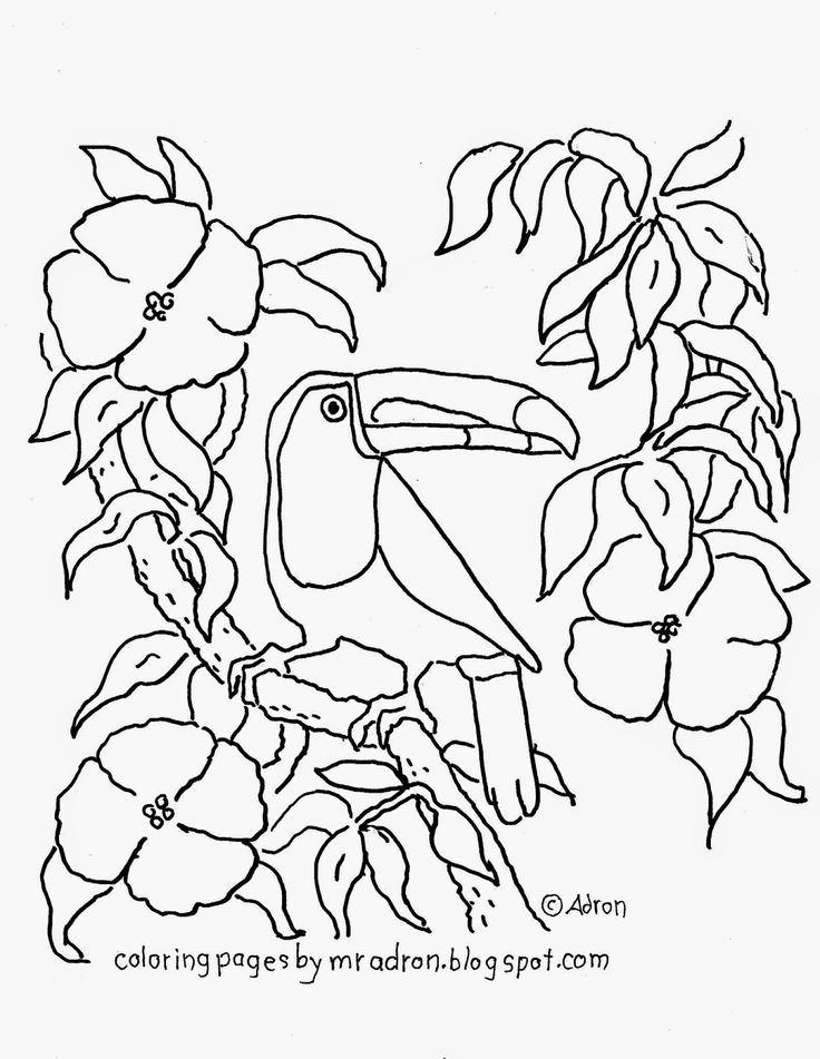 best images about coloring pages for kid on pinterest