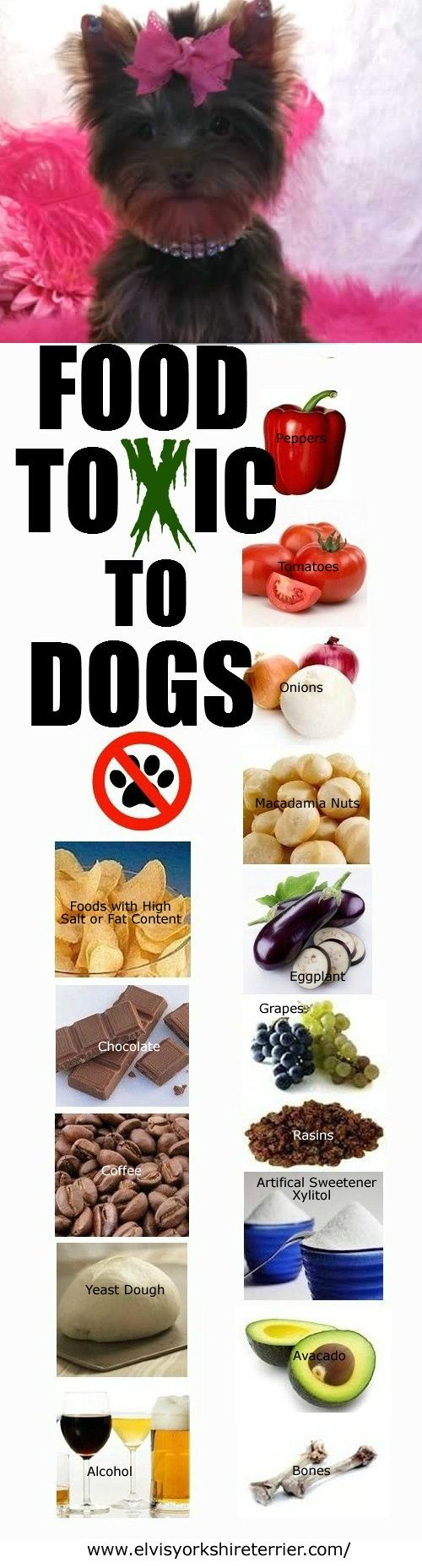 Here are some foods that ar