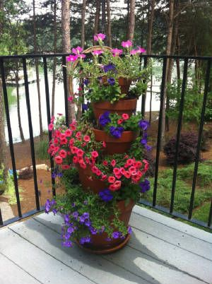 17 Best images about Topiary Plant Stand Ideas! on ... on Amazing Plant Stand Ideas  id=49288