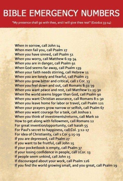 Psalms 91 was my strength d