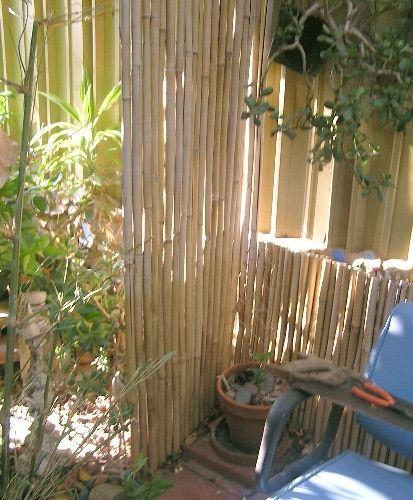 bamboo garden privacy screen privacy screen patio   photo lisa hallett taylor   House