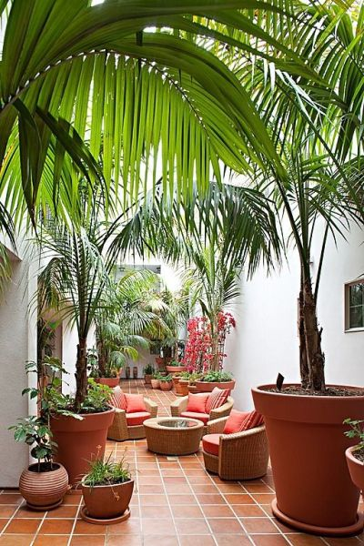 tropical outdoor patio Best 20+ Tropical patio ideas on Pinterest | Tropical