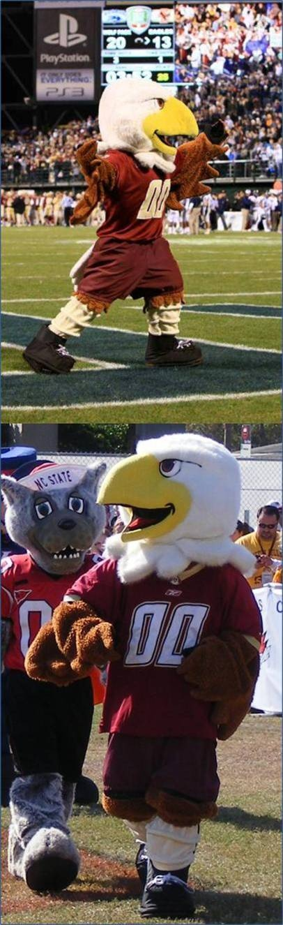 1000+ images about Boston College Eagles on Pinterest ...
