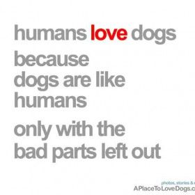 32 best images about Dog Quotes/Sayings/Signs on Pinterest ...