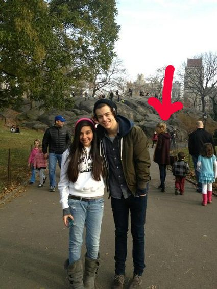 One Direction's Harry Styles hangs out with Taylor Swift ...