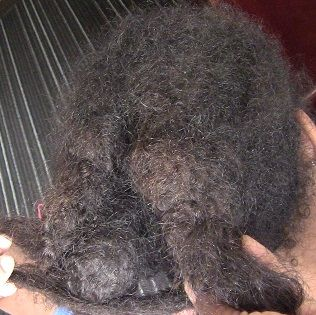 Severely Matted Hair How To Detangle Tangled Matted Hair