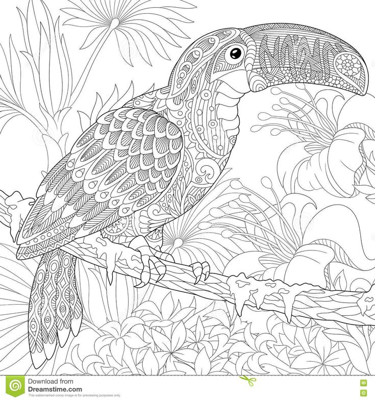 best images about coloriages on pinterest  coloring