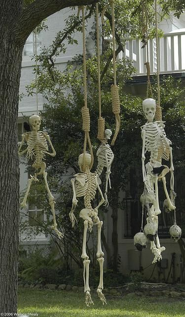 IDEAS & INSPIRATIONS: Halloween Decorations, Halloween Decor: Outdoor Halloween Decorations: