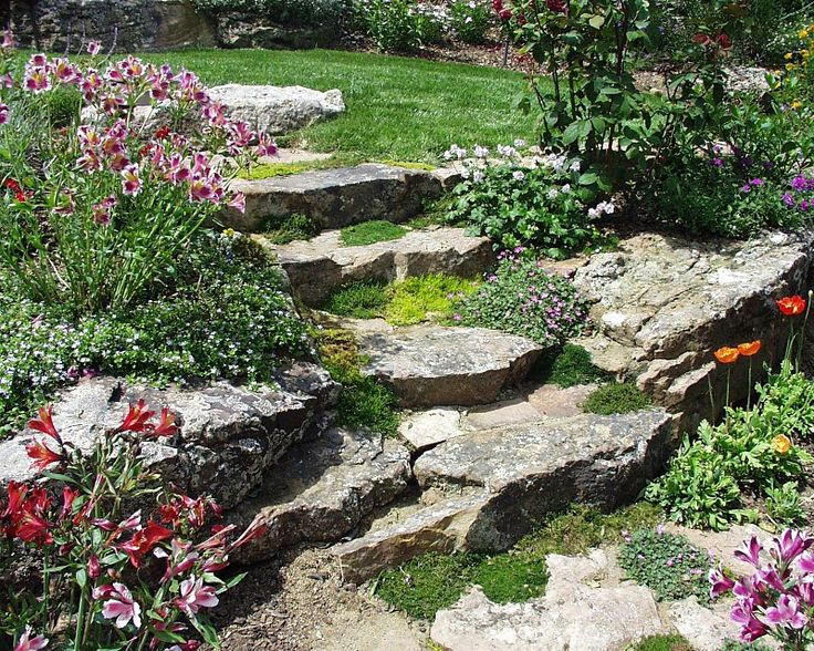 11 best images about Terraced front yard on Pinterest ... on Terraced Front Yard Ideas id=71635