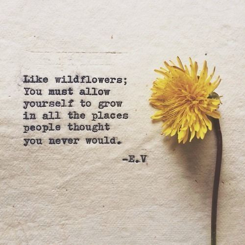 """""""Like wildflowers; you must allow yourself to grow in all the places people thought you never"""