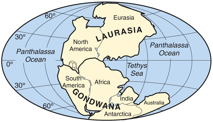 Pangaea Supercontinent Between 200 Million And 300