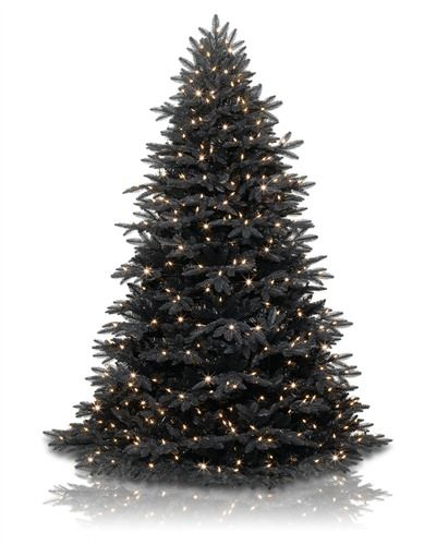 1000 Images About Christmas Tree Shopping On Pinterest