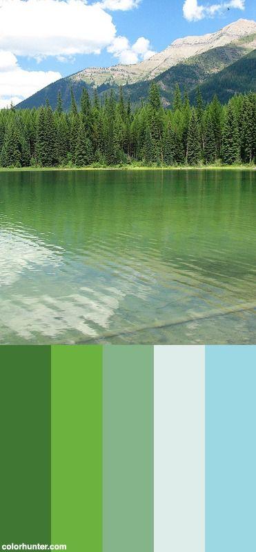 Serene Green Color Scheme Color Schemes Pinterest