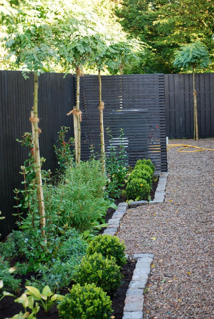 19 best images about dark garden fence on pinterest dark on backyard fence landscaping id=46206