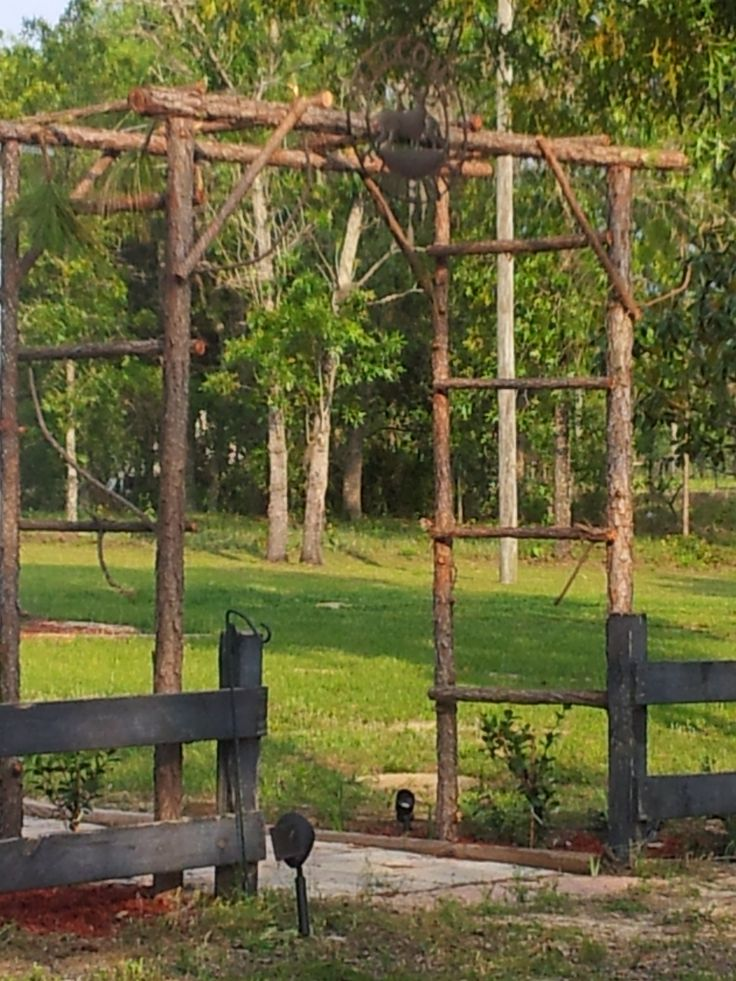 Rustic Arbor Trellis Made From Pine Saplings Easy And