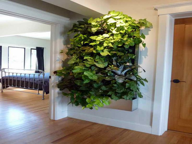 24 best images about indoor living wall planters ideas on on indoor wall garden diy vertical planter id=34321