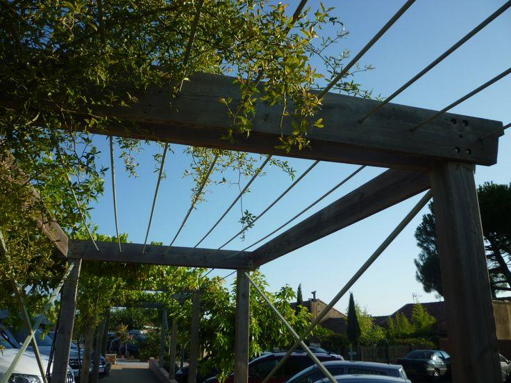 Walkways Pergolas And Wire On Pinterest