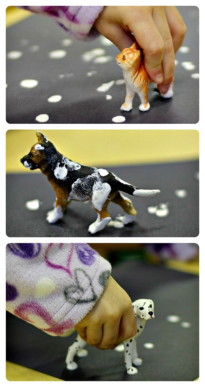 Snowy Footprints – A process art activity for a preschool pet theme.  This would do well with older kids as well!  Lots of