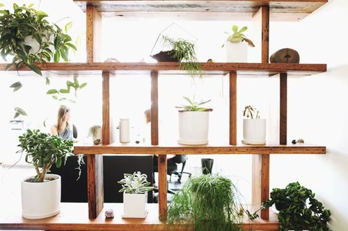 17 Best Images About Plant Divider On Pinterest Inside Front Doors Metal Chain And Studio