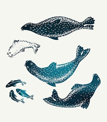 Nol Nature Enchante – Seals, baby seals and fishes – Black  petrol blue ink – illustration by Amandine Delaunay // Halley des