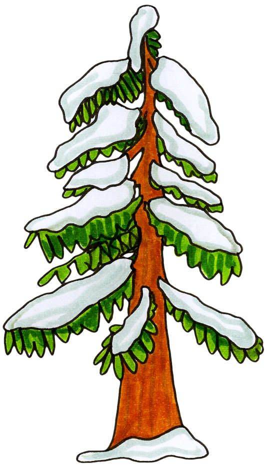 237 best CLIP ART TREES CLIPART images on Pinterest