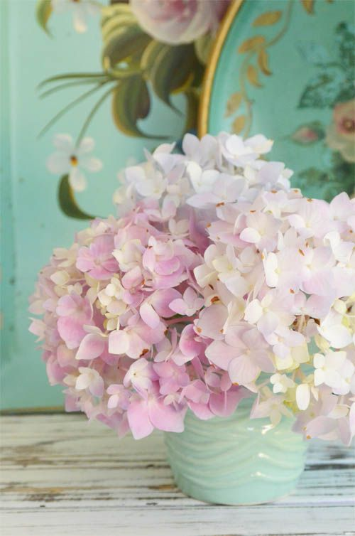 Image result for pastel hydrangea