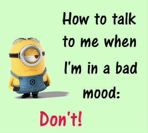 17 Best images about Minions on Pinterest | Minion sayings ...